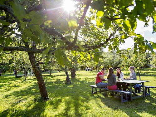 På Rosendals trädgård är det mysigt att fika i den gröna trädgården.