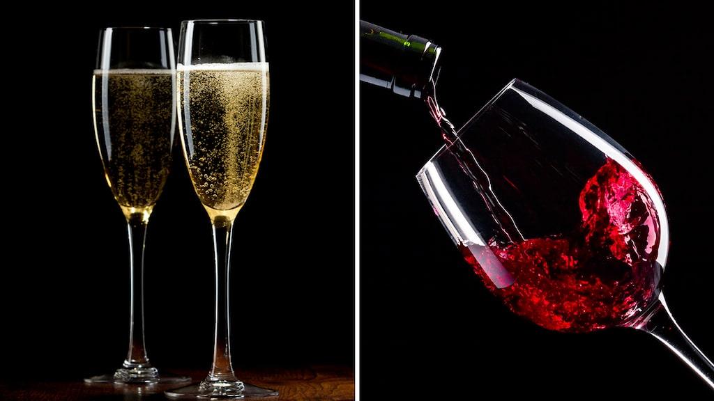 Vingruppen bjuder in till en härlig vinmässa på Norra Latin i september.  Som Allt om Vin-läsare får du rabatt på entrépriset, uppge en kod när du bokar.
