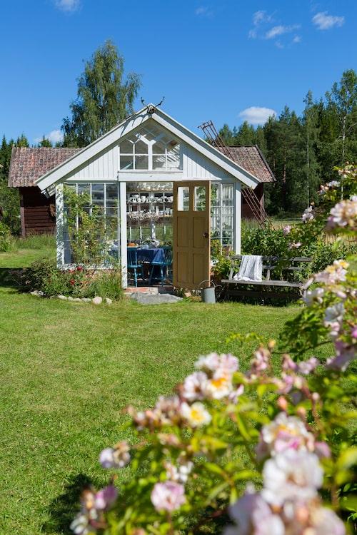 Dags för fikastund i växthuset vid Ljungstorp som är byggt av gamla fönster.