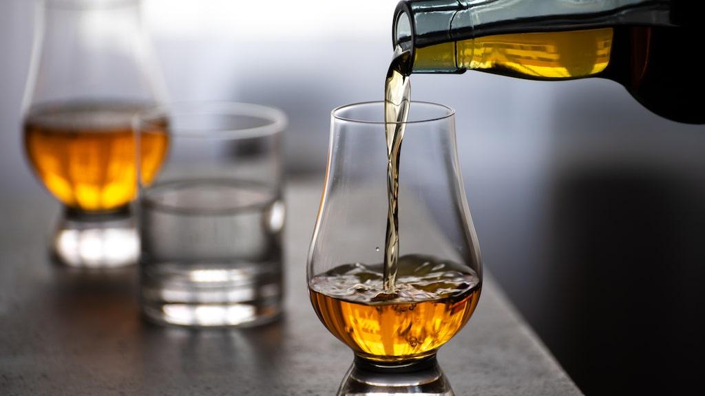 Vi har valt ut några av expertens favoriter på gin-, whisky- och romhyllan.