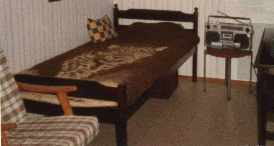 Brunt var favoritfärgen för många. Här ett typiskt överkast på 70-talet, av polyester med tigermotiv.