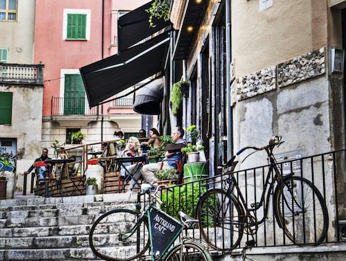 Ett koncentrat av chica butiker, designhotell, barer och restauranger hittar du i La Lonja.