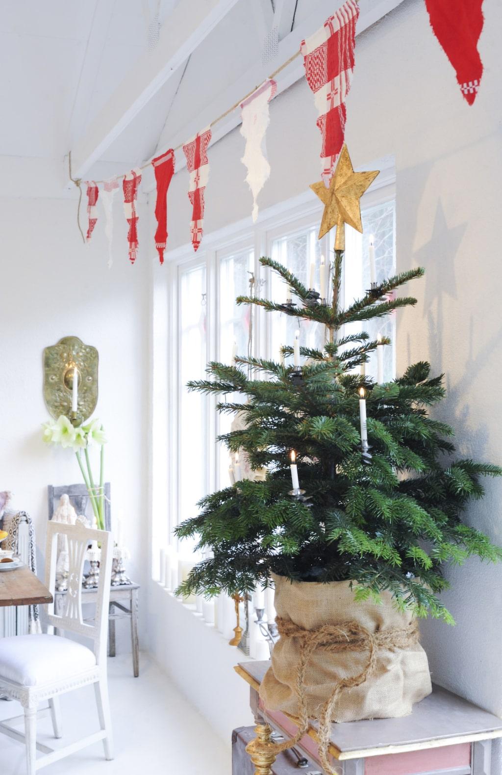 Ovanför den lilla granen har Håkan hängt sitt flaggspel gjort av gamla kökshanddukar. Han har klippt vimplar av handdukarna som limmats fast på ett juterep och hängts upp i orangeriet.