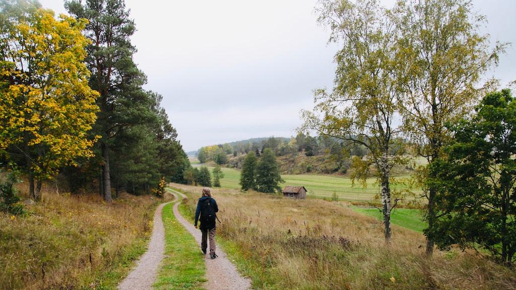 Sköna vyer runt Bergs Gård, söder om Trosa.
