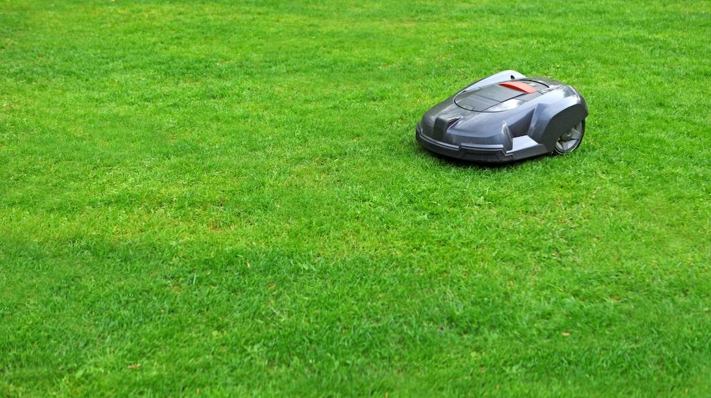 Förutom de vanligare robotgräsklipparna kan man nu hitta de mest märkliga figurerna på marknaden.