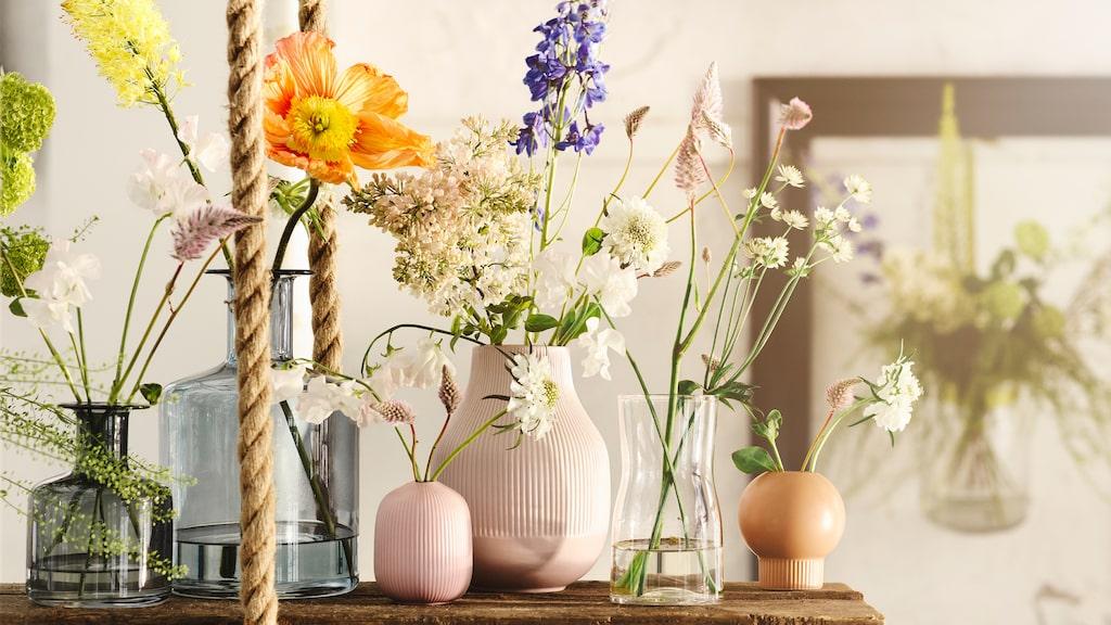 Gradvis och Pepparkorn vaser, från 59 kronor.