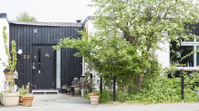 Sandie bor med sina döttrar och en katt i atriumhuset utanför Lund.