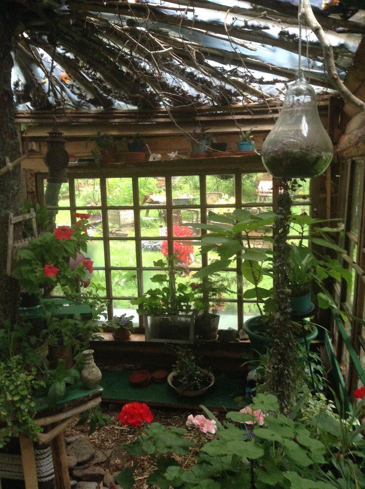 """""""Det kanske inte är så mycket ett växthus som lusthus. En plats där man kan sitta och njuta"""", säger Eila."""