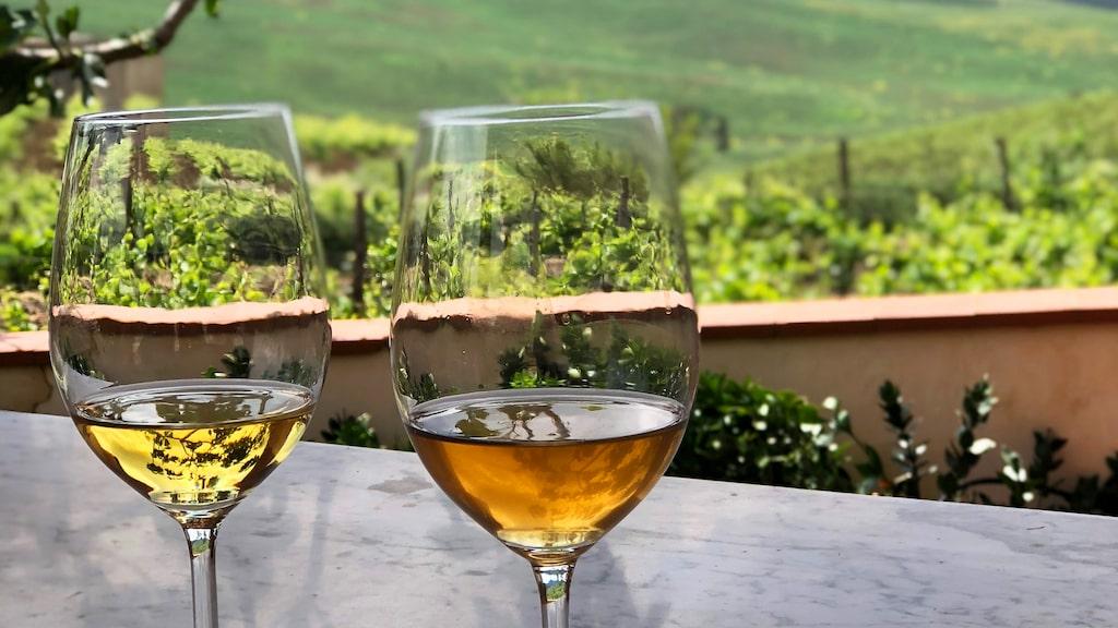 Orange vin är spännande - prova när du får chansen.