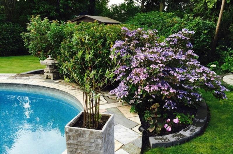 Här finns magnolia, hortensia, gullregn och rhododendron.