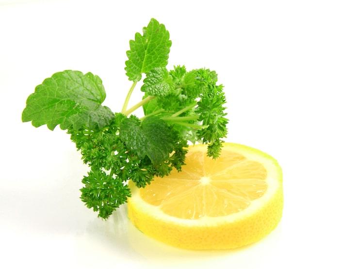Örter och citron passar fint som tillbehör till middagar med sauvignon blanc i glaset.