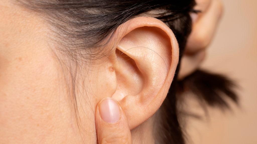 Muskeln tympanisk tensor uppges ha som funktion att dämpa höga ljud. Vissa kan emellertid kontrollera den frivilligt.