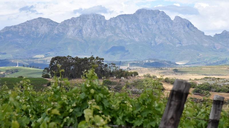 Stellenbosch, inte så långt från Kapstaden, lockar med mat, vin och vackra vyer.