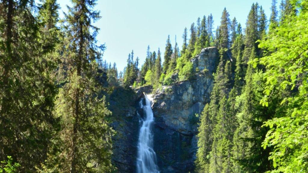<p>Ett av de många vattenfallen är ett bra mål för dagens aktivitet.</p>