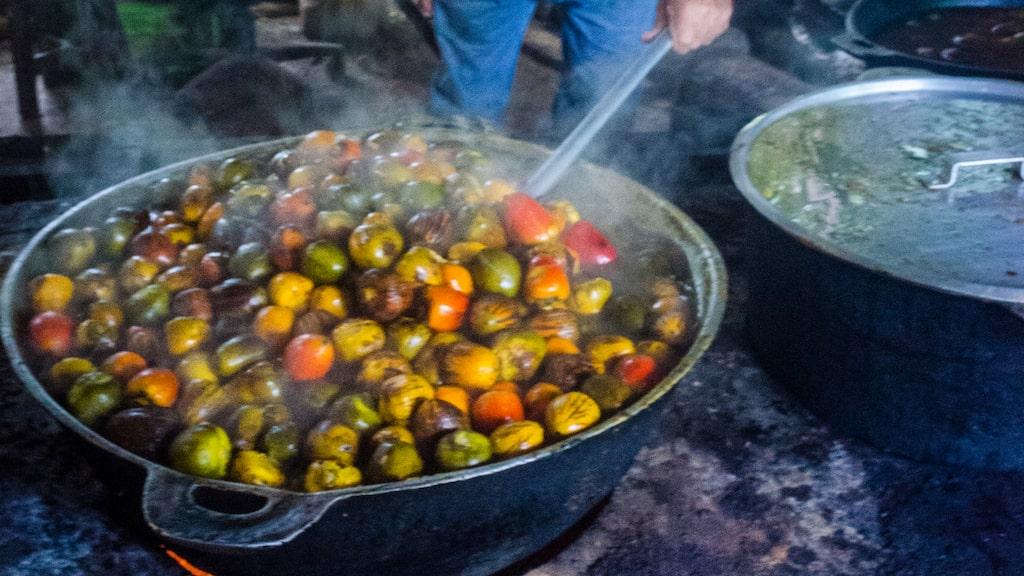 Pajibayes är en populär palmfrukt i Syd- och Mellanamerika som är proppad med vitaminer och mineraler. Den används i sallader och en rad maträtter men äts också som den är eller som fruktdrink. Dock kräver den lång koktid på flera timmar.