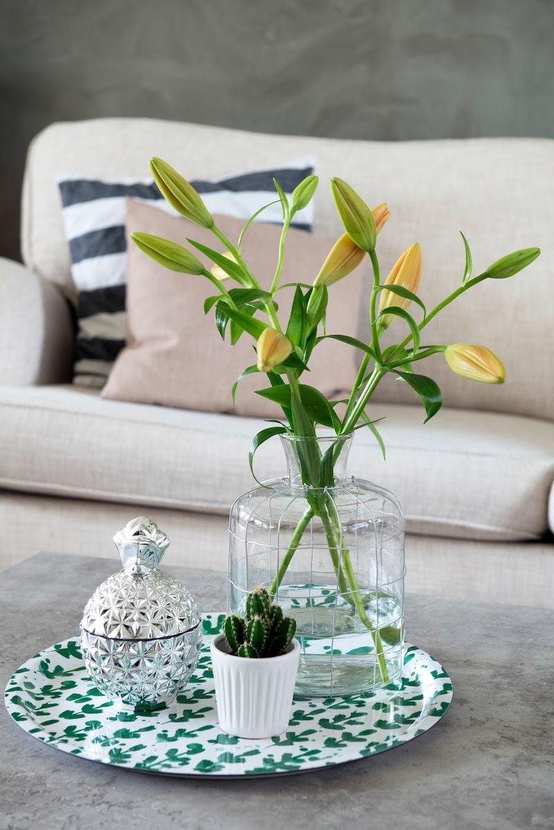 Blickfång. Vasen kommer från Granit, skålen från Guldfynd och kaktusen från Plantagen. Brickan är från Lagerhaus.