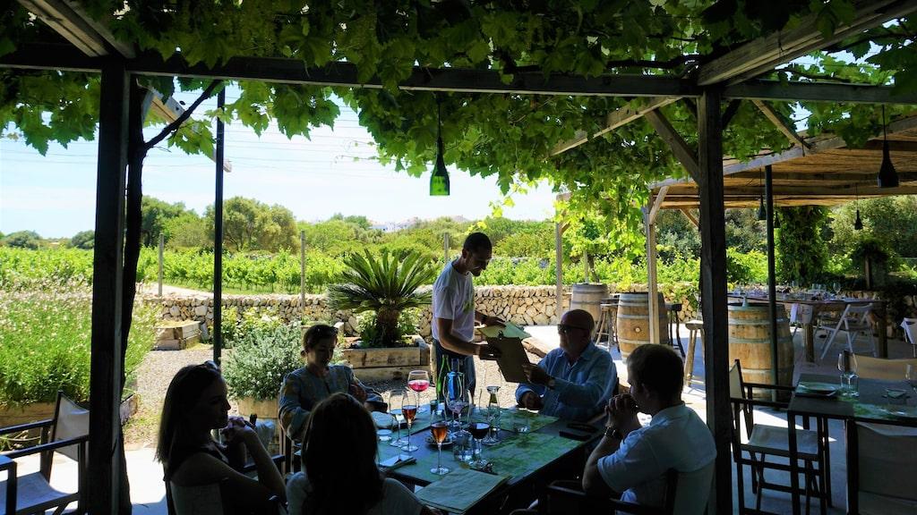 Lunch under vinrankorna på Binifadet.
