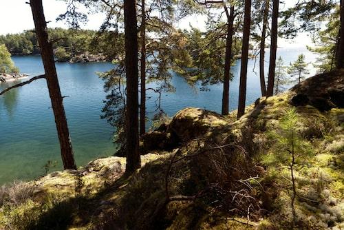Sjö och skog i samma andetag, Tivedens nationalpark levererar.