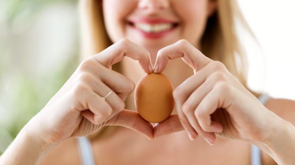 Ägget är ett omåttligt populärt livsmedel med flera användningsområden i köket. Allt från att äta kokt till frukost, till att göra omelett av eller som ingrediens i bakverk.