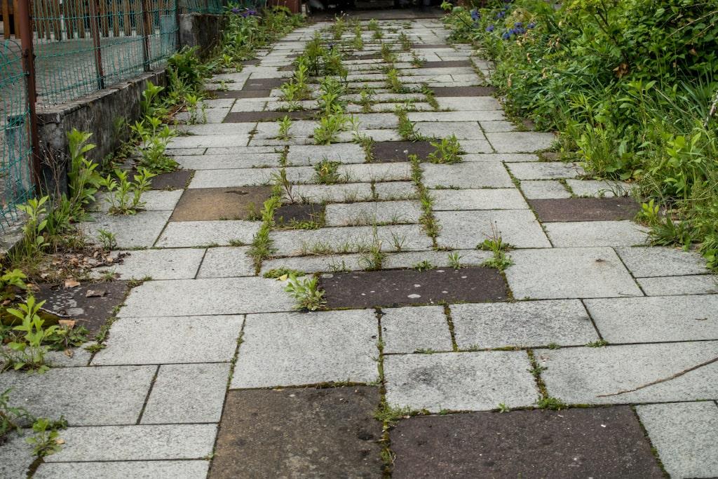 En riktigt bra ogräsdödare för sprickor i asfalt och trottoarer är kokande vatten.