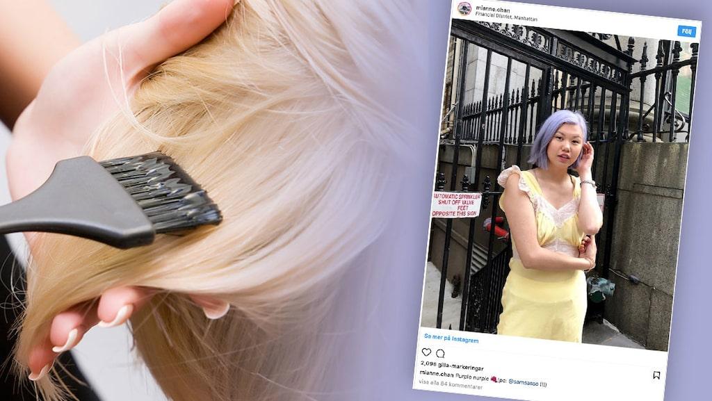 Lila är den nya trendfärgen på håret.