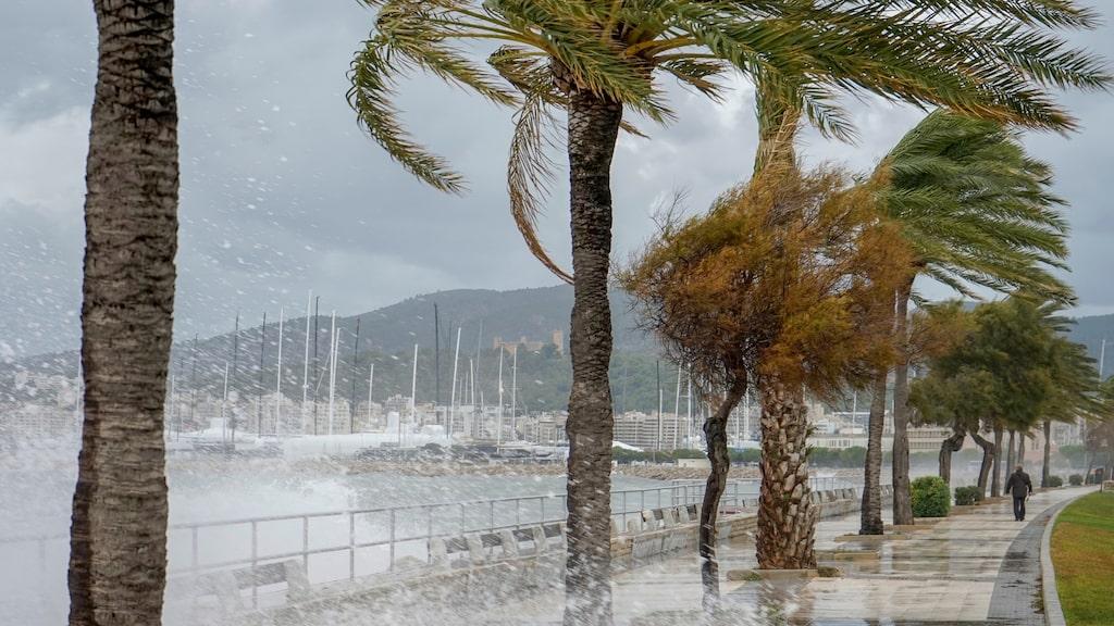 Varning för rejält oväder i Palma på Mallorca (foto från tidigare tillfälle).