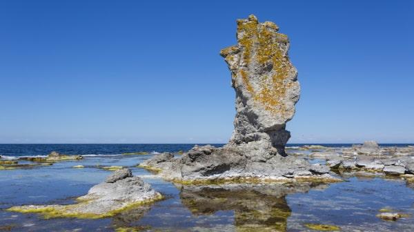 Vid Bjärge, i naturreservatet Digerhuvud på nordvästra Fårö, finns Sveriges största raukområde
