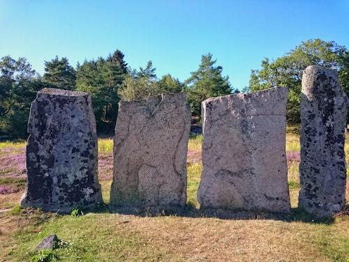 Greby är Bohusläns största gravfält.