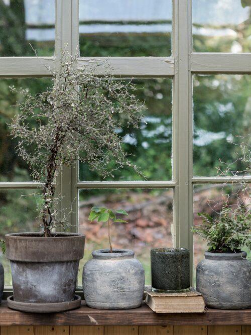 De vackra gamla fönstren har tidigare suttit i boningshuset och i ladugården men har nu fått nytt liv i orangeriet.