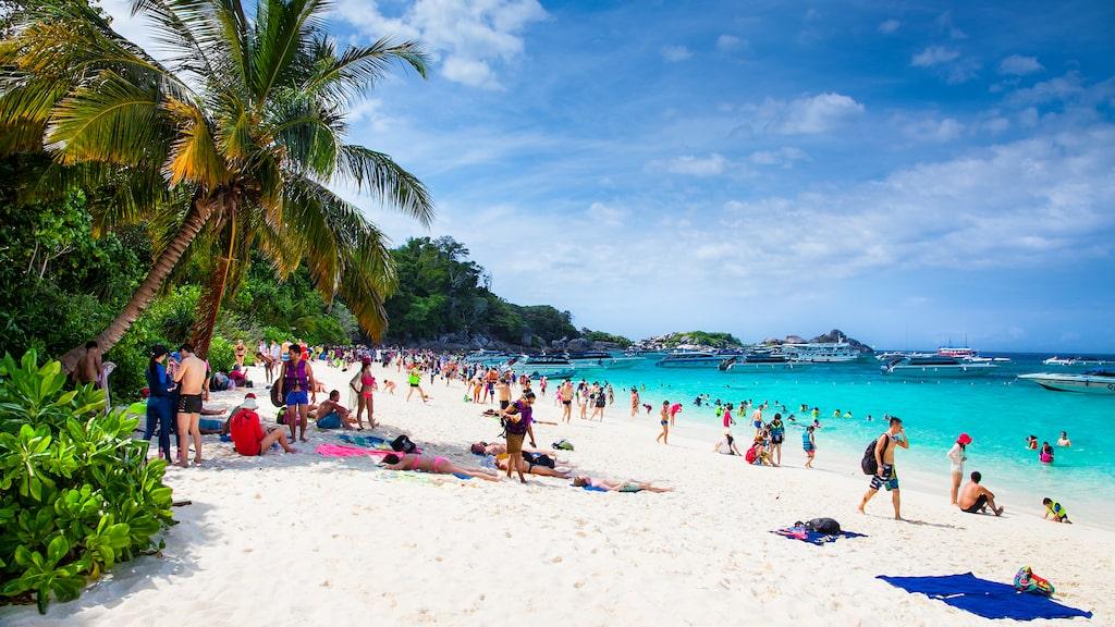 Hundratusentals svenskar reser till Thailand varje år.