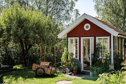 Den gamla kärran har Gunilla och David fått av en granne och renoverat själva. Den är perfekt att dra tunga korgar i under både skörd och plantering.