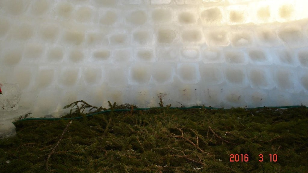 Barren på golvet inne i is-igloon gör det varmt och skönt.