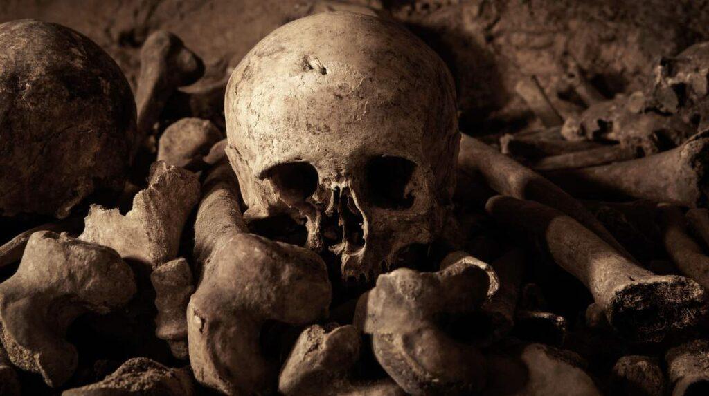 Du och en vän kan bli först i världen att vakna levande i Paris katakomber.