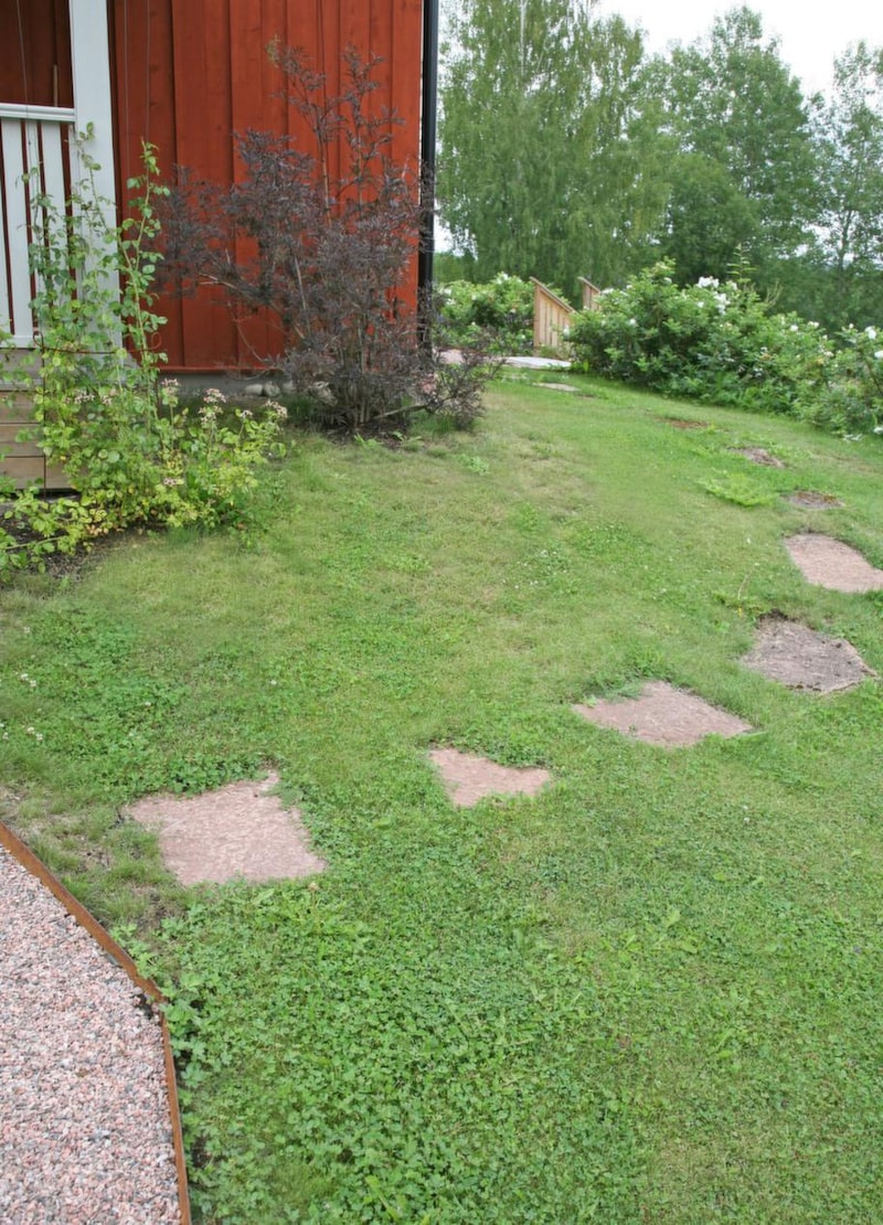 <strong>Ölandssten som trampsten, fin gång i gräsmattan</strong><br>En enkel och fin gång i gräsmattan fixar man lätt med trampstenar. Här har extra tjock oregelbunden ölandssten använts. Den röda tonen harmonierar fint med det faluröda huset. Trampstenen placeras ut på gräset med jämna stegmellanrum, grässvålen grävs bort där stenen ska ligga. Tjocka stenar som dessa behöver inget speciellt underlag, utan kan läggas direkt mot jorden.<br>Pris: Oregelbunden form, 6 centimeter tjock, cirka 700 kronor/kvadratmeter.