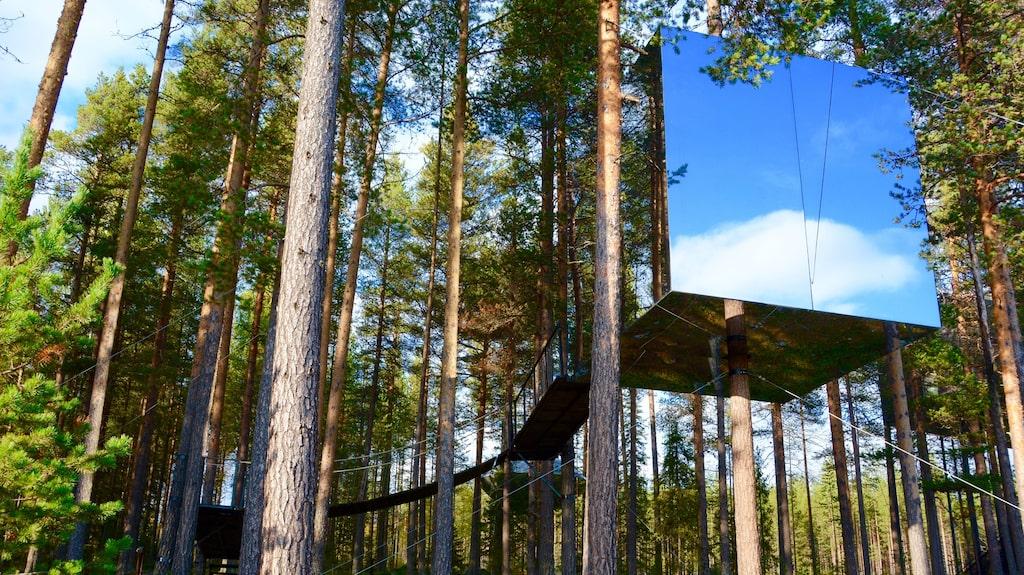 Treehotel i Harads var nominerad i kategorin.