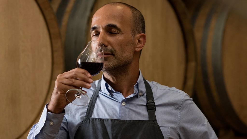 Aromatisk, balanserat, blommigt och druvtypiskt är bara några av de ord man brukar använda när man till exempel provar vin.