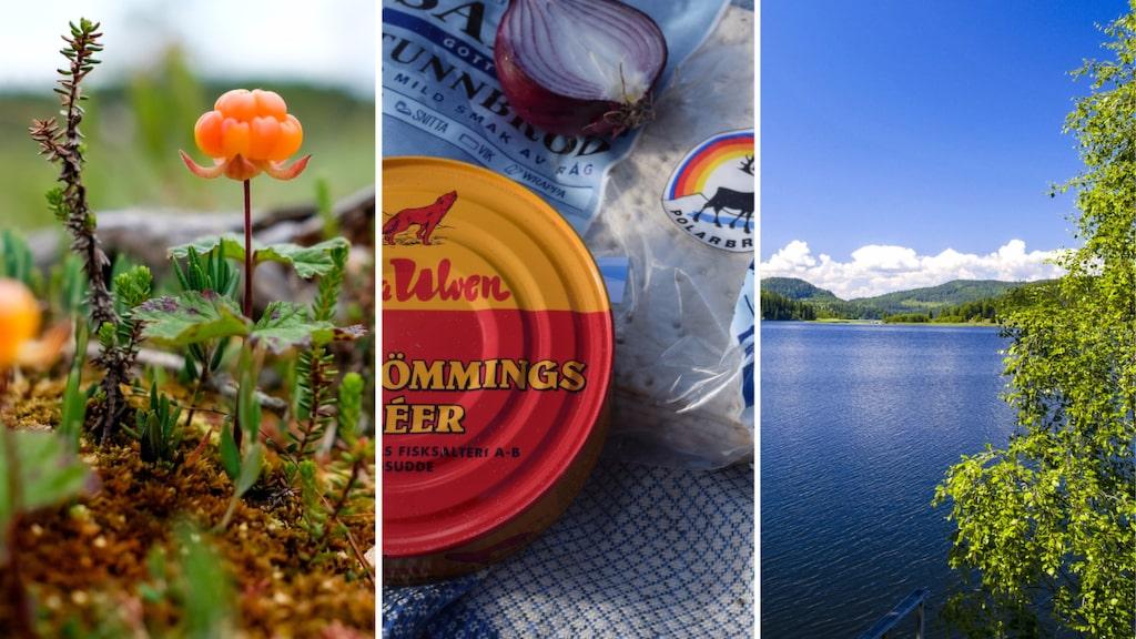 Tre av skälen till att älska Ångermanland!