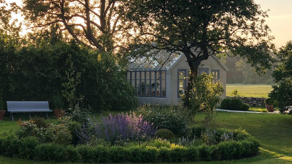 Trädgården har planteringar i engelsk stil med bland annat fruktträd, trädgårdsland, häckar, snittblommor, ett par hundra David Austin-rosor samt hundratalet lavendel.
