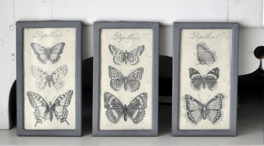 8. Små söta tavlor med ljuvliga svartvita fjärilar. Ram i gammal stil,19,5 x 11 centimeter, 359 kronor/set med tre, countrybymail.se.