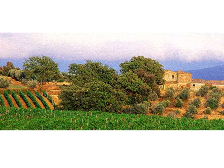 Sedan 2013 är Col d'Orcia ekologiskt certifierade.