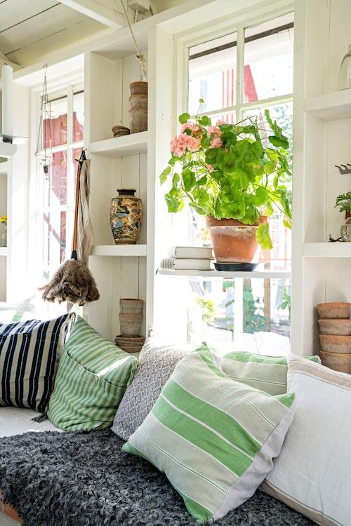 I fönstren sitter flexibla hyllor som är löstagbara och kan sättas dit eller tas bort efter behov. Här kan plantor växa till sig tidigt på säsongen i väntan på att de kan placeras ut, och få en viloplats när kvällarna börjar bli kallare under sensommaren.