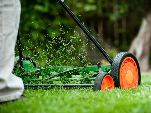 Klippt gräset? Ta tillvara på det!