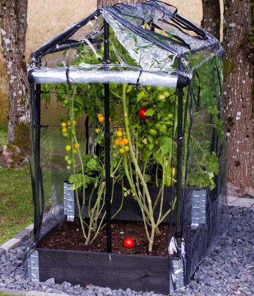 Drivhus för odlingslåda skapar växthusklimat och skyddar från fåglar och skadedjur. Enkel att montera och kan öppnas från alla håll.