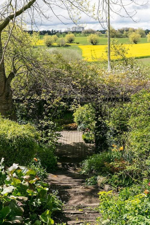 Från trädgårdens sluttning är utsikten milsvid och så här på vårkanten är rapsfälten riktigt gula.