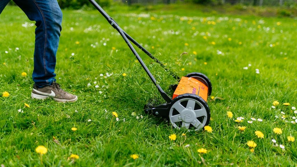 Modellen med högst betyg fungerar på alla sorters gräs.