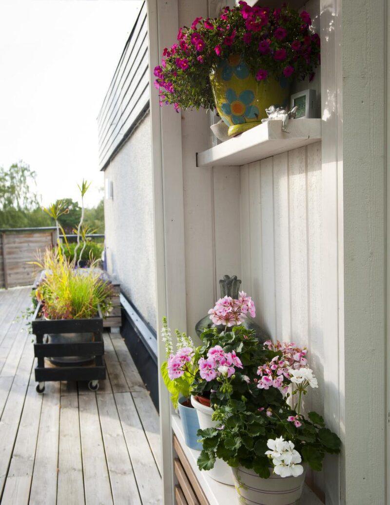 Kryddhyllan har fått ge plats för lite blomster istället. Men tanken är att detta ska vara en plats för kökets kryddor.