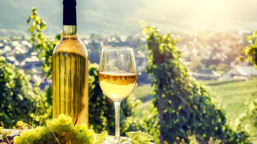 Franska vindistriktet Alsace bjuder på många fina viner, bland annat riesling av hög kvalitet.