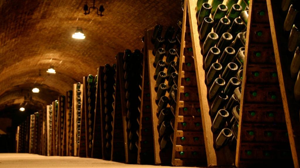 Man behöver inte ha en dyr vinkällare för att lagra vin. Det går bra med garderoben hemma.
