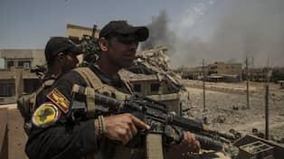 Kriget i irak ni har precis dodat en