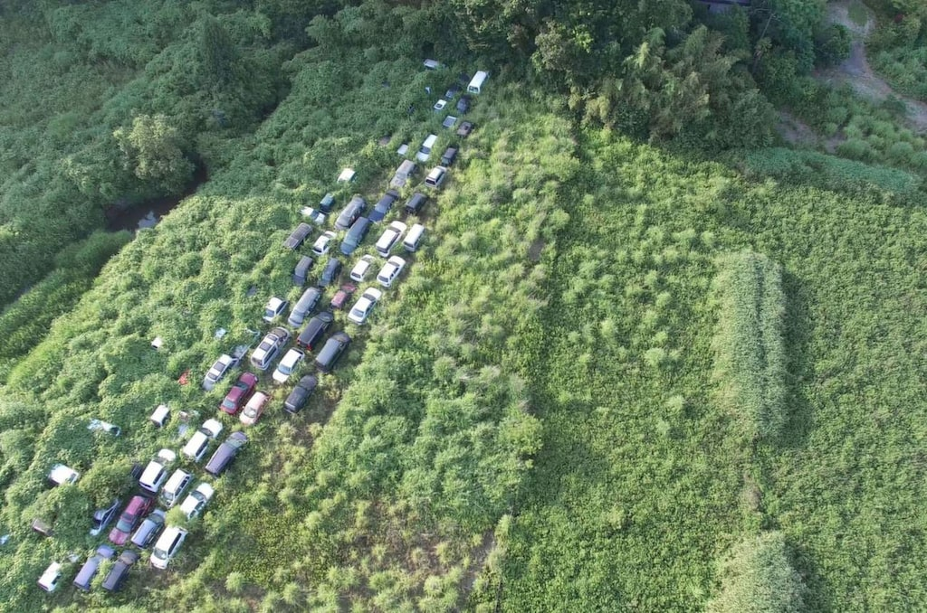 <p>Naturen har börjat täcka de övergivna bilarna som fortfarande står kvar på det som en gång var en väg. </p>